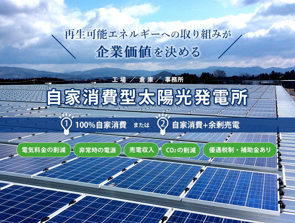 電 売 太陽 発電 光